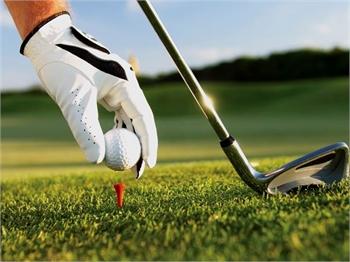 Golf Clubs - Sample